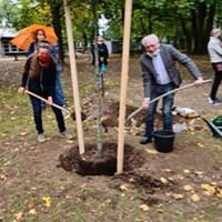 Baumbeauftragte und BA Vorsitz graben den Baum ein